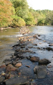 A Native American fish weir bisects the river downstream from Ellijay