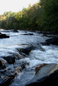 One of the many shoals that line the 13-mile run from Ellijay to Carters Lake