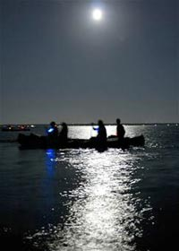Full-moon_paddle_opt_tcm18-51253