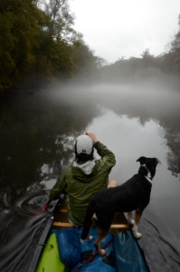 Jesse Demonbreun-Chapman and Oconee venture down a misty and rain-swollen Ogeechee.