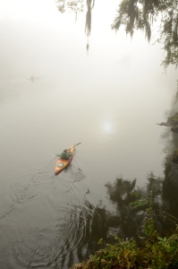 A foggy view from atop limestone bluffs on Day 4 of Fall Float on the Flint.