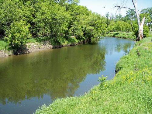 river bank.jpg